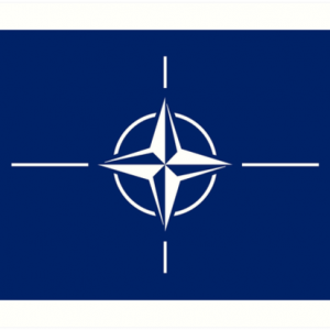Nato otan logo on zerohomebills.com by solaranna flag